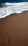 Foot prints in the sand, foot prints, Foot prints sand, sandy foot prints, Foot Prints in the sand with Atlantic surf rolling in Virginia Beach Virginia, Fine Art Photography by Ron Bennett,Bennett, Fine Art, Fine Art photography, Art Photography, Copyright RonBennettPhotography.com © Fine Art Photography by Ron Bennett, Fine Art, Fine Art photography, Art Photography, Copyright RonBennettPhotography.com ©