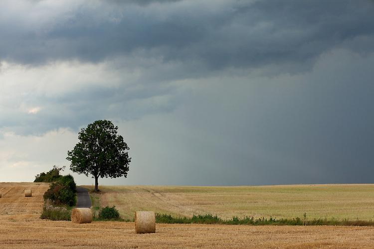 Europa, DEU, Deutschland, Nordrhein Westfalen, NRW, Eifel, Mechernich , Landschaft, Agrarlandschaft, Sommer, Unwetter, Gewitterwolken, Regenwolken , Kategorien und Themen, Landwirtschaft, Landwirtschaftlich, Agrar, Agrarwirtschaft, Erzeugung, Landwirtschaftliche Produkte, Wetter, Himmel, Wolken, Wolkenkunde, Wetterbeobachtung, Wetterelemente, Wetterlage, Wetterkunde, Witterung, Witterungsbedingungen, Wettererscheinungen, Meteorologie, Bauernregeln, Wettervorhersage, Wolkenfotografie, Wetterphaenomene, Wolkenklassifikation, Wolkenbilder, Wolkenfoto<br /> <br /> [Fuer die Nutzung gelten die jeweils gueltigen Allgemeinen Liefer-und Geschaeftsbedingungen. Nutzung nur gegen Verwendungsmeldung und Nachweis. Download der AGB unter http://www.image-box.com oder werden auf Anfrage zugesendet. Freigabe ist vorher erforderlich. Jede Nutzung des Fotos ist honorarpflichtig gemaess derzeit gueltiger MFM Liste - Kontakt, Uwe Schmid-Fotografie, Duisburg, Tel. (+49).2065.677997, archiv@image-box.com, www.image-box.com]