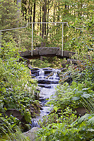Waterfall and stream under small stone bridge in woodland setting in environmentally-responsible, native plant sustainable garden, Mt Cuba Center Delaware