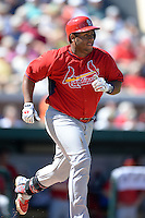 St. Louis Cardinals catcher Audry Perez (63) during a spring training game against the Detroit Tigers on March 3, 2014 at Joker Marchant Stadium in Lakeland, Florida.  Detroit defeated St. Louis 8-5.  (Mike Janes/Four Seam Images)