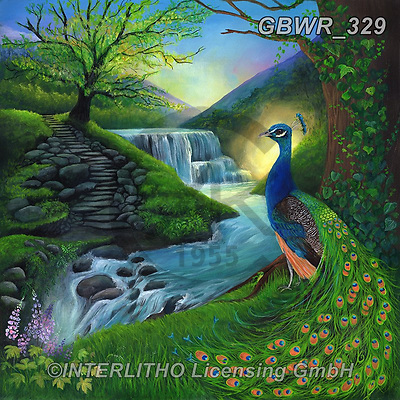Simon, REALISTIC ANIMALS, REALISTISCHE TIERE, ANIMALES REALISTICOS, innovativ, paintings+++++RiverPeacock_LetMeTakeYouThere,GBWR329,#a#, EVERYDAY