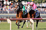ARLINGTON HEIGHTS, IL - AUGUST 13: The Pizza Man #5 (L), ridden by Mike E. Smith,  and Greengrassofyoming #3 (R), ridden by Shaun Bridgmohan, run in the home stretch during the Arlington Million  at Arlington International Racecourse on August 13, 2016 in Arlington Heights, Illinois. (Photo by Jon Durr/Eclipse Sportswire/Getty Images)