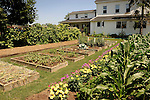 Rubin Fisher Garden in July. Raised vegetable beds and farmhouse.