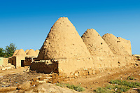 "Pictures of the beehive adobe buildings of Harran, south west Anatolia, Turkey.  Harran was a major ancient city in Upper Mesopotamia whose site is near the modern village of Altınbaşak, Turkey, 24 miles (44 kilometers) southeast of Şanlıurfa. The location is in a district of Şanlıurfa Province that is also named ""Harran"". Harran is famous for its traditional 'beehive' adobe houses, constructed entirely without wood. The design of these makes them cool inside. 35"