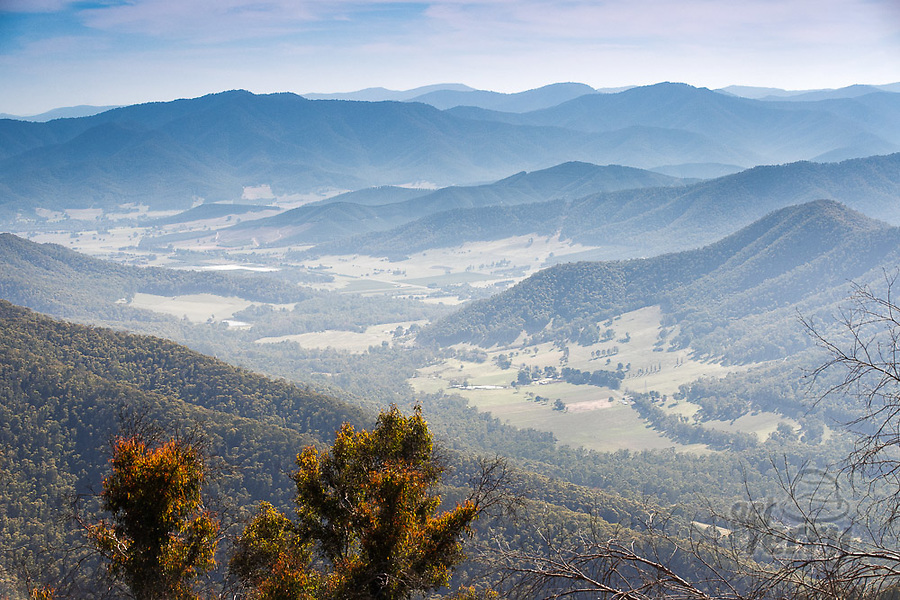 Image Ref: CA1244<br /> Location: Mt Buffalo National Park<br /> Date of Shot: 07.03.20
