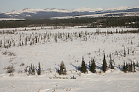 Sunday March 11, 2007   ----    Jeff King on the trail nearing Unalakleet on Sunday afternoon.