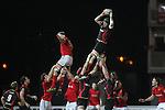 Robert Sidoli.RaboDirect Pro12.Dragons v Munster.03.03.12.©STEVE POPE