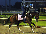 LOUISVILLE, KY - MAY 02: Terra Promessa (Curlin x Missile Bay, by Yes It's True) works 4 furlongs in :50.80 with exercise rider Abel Flores in preparation for the Kentucky Oaks at Churchill Downs, Louisville KY. Owner Stonestreet Stables LLC, trainer Steven M. Asmussen. (Photo by Mary M. Meek/Eclipse Sportswire/Getty Images)
