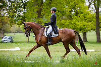 NZL-James Avery rides Goldfinger during the Dressage for the CCI-L 3* Section B. Interim-2nd. 2021 GBR-Saracen Horse Feeds Houghton International Horse Trials. Hougton Hall. Norfolk. England. Thursday 27 May 2021. Copyright Photo: Libby Law Photography