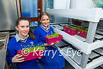 Eilish Mullane and Ali O'Donoghue from St Brigids Presentation Killarney with their project Vertical Farming the future for healthy schools