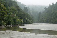 Moody scene with native forest of Whanganui Inlet on west coast, Nelson Region, South Island, New Zealand