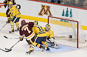 University of Michigan Wolverines