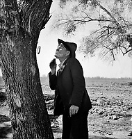 Open-air Barber: On U.S. 99 between Bakersfield and the Ridge, en route to San Diego. Migrant man shaving by roadside. February 1939.<br /> <br /> Photo by Dorothea Lange.