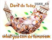 Kayomi, CUTE ANIMALS, paintings, Don'tDoToday_M, USKH49,#AC# illustrations, pinturas ,everyday