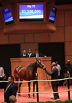 10  November  2009 Fasig TIpton November Breeding Stock sale.  Hip #73 Diamondrella, consigned by Hidden Brook, brought a bid of $1,100,000.  Reserve Not Met.  Diamondrella is a multiple Graded Stakes winner, with earnings of over half a million dollars.