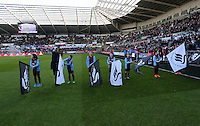 SWANSEA, WALES - FEBRUARY 07: Guard of |Honour before the Premier League match between Swansea City and Sunderland AFC at Liberty Stadium on February 7, 2015 in Swansea, Wales.