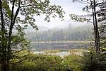 Pillsbury State Park in Washington, NH