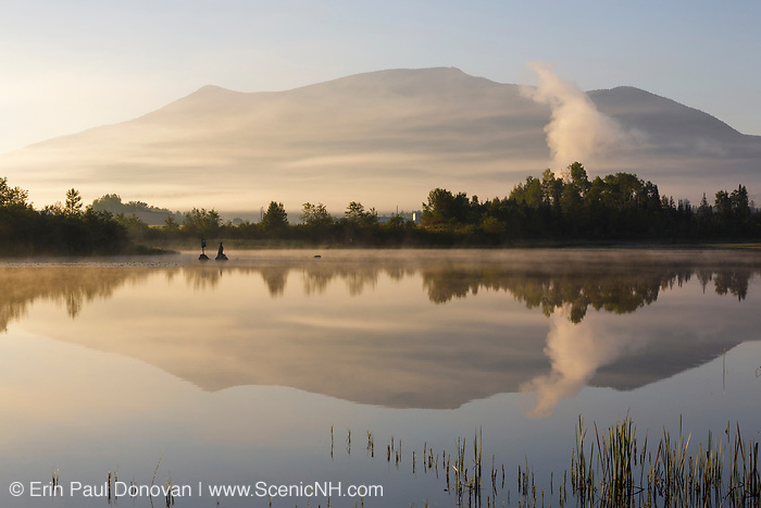 Reflection of Cherry Mountain in Airport Marsh, near Mt Washington Regional Airport, in Whitefield, New Hampshire USA a foggy summer morning.