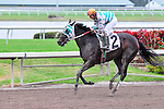 31 January 2010: Depost Only with jockey Elvis Trujillo in the eight race at Gulfstream Park in Hallandale Beach, Florida.