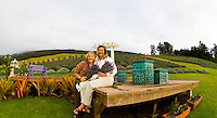 Visitors enjoy the Alii Kula Lavender farm and gardens at the base of Haleakala, Kula