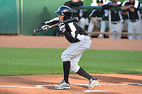 Omar Carrizales (8) of the Grand Junction Rockies squares to bunt against the Ogden Raptors during Opening Night of the Pioneer League Season on June 16, 2014 at Lindquist Field in Ogden, Utah. (Stephen Smith/Four Seam Images)