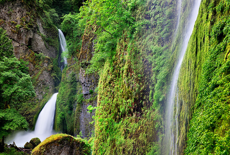 Tanner Creek Falls. Columbia River Gorge National Scenic Area, Oregon