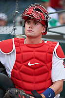 Memphis Redbirds catcher Carson Kelly (19) in the dugout during a game against the Round Rock Express on April 28, 2017 at AutoZone Park in Memphis, Tennessee.  Memphis defeated Round Rock 9-1.  (Mike Janes/Four Seam Images)