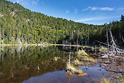 Zealcliff Pond, just off the Appalachian Trail, in the White Mountains of New Hampshire USA during the summer months.