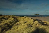 Fidra Lighthouse near Yellowcraigs, East Lothian