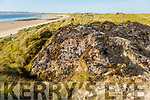 The badly fire damaged sand dunes on Banna Beach that were burned on Saturday afternoon.