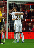 Saturday 10 November 2012<br /> Pictured L-R: Garry Monk of Swansea hugs felow player Kemy Agustien after the final whistle. <br /> Re: Barclay's Premier League, Southampton FC v Swansea City FC at St Mary's Stadium, Southampton, UK.