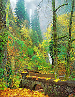 M00058L.tiff   Multnomah Falls with fall color and stone fence. Columbia River Gorge National Scenic Area, Oregon