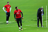 (L-R) Wayne Hennesey, Daniel Ward and coach Tony Roberts in action during the Wales Training Session at the Vale Resort, Hensol, Wales, UK. Tuesday 29 August 2017