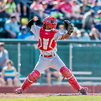 16 July 2017: Auburn Doubledays catcher Jeyner Baez in action against the Vermont Lake Monsters at Centennial Field in Burlington, Vermont. The Monsters defeated the Doubledays 6-3 in NY Penn League action. Mandatory Credit: Ed Wolfstein Photo *** RAW (NEF) Image File Available ***