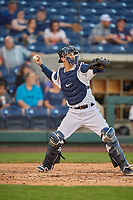 Caleb Joseph (14) of the Reno Aces during the game against the Nashville Sounds at Greater Nevada Field on June 5, 2019 in Reno, Nevada. The Aces defeated the Sounds 3-2. (Stephen Smith/Four Seam Images)