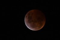 BOGOTÁ - COLOMBIA, 21-01-2019: El eclipse total de luna es visto en Bogotá, Colombia, hoy, 20 de enero de 2019, a partir de las 10:30 pm. / The total Lunar eclipse is seen in Bogota, Colombia today, January 20, 2019, from 10:30 pm. Photo: VizzorImage/ Gabriel Aponte / Staff