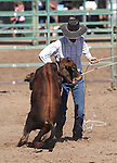 TJ Thompson competes in the calf roping event at the Minden Ranch Rodeo on Sunday, July 24, 2011, in Gardnerville, Nev. .Photo by Cathleen Allison
