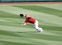 Mike Trout - Los Angeles Angels 2021 spring training (Bill Mitchell)