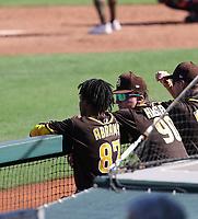 CJ Abrams (left), Robert Hassell III (right) - San Diego Padres 2021 spring training (Bill Mitchell)