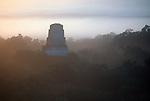 Tikal, Mayan temple, Guatemala, El Petén department, Central America, jungle, sunrise,