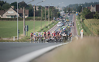 peloton approaching<br /> <br /> 12th Eneco Tour 2016 (UCI World Tour)<br /> stage 3: Blankenberge-Ardooie (182km)