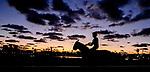 January 20, 2021:Horses jog in the predawn light and prepare for the 2021 Pegasus World Cup Invitational at Gulfstream Park in Hallandale Beach, Florida. Scott Serio/Eclipse Sportswire/CSM