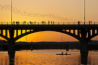Bats take flight from the Congress Avenue Bridge in downtown Austin, Texas every evening at sunset during the annual bat season, April-October.