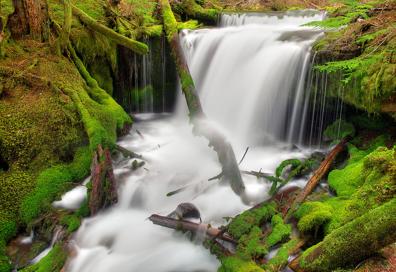 Big Spring Creek with mossy rocks and waterfalls. Gifford Pinchot National forest, Washington.