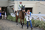 January 16, 2016: Street of Gold with Robby Albarado up heads to the starting gate in the Marie G. Krantz Memorial Stakes race in New Orleans Louisiana. Steve Dalmado/ESW/CSM