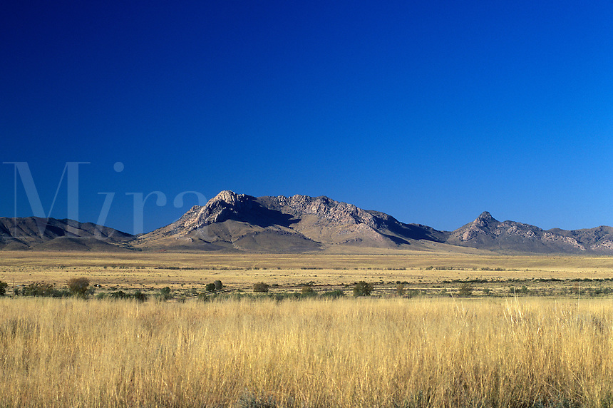 Helen's Dome in the Chircahua Mountains ( homeland to the Chircahua - Apaches )
