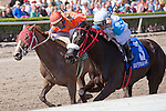 HALLANDALE BEACH, FL - JANUARY 21: #3 Mia Torri with Javier Castellano up holds off #5 You Bought Her at the wire to win the Sunshine Millions Distaff at Gulfstream Park. (Photo by Arron Haggart/Eclipse Sportswire/Getty Images