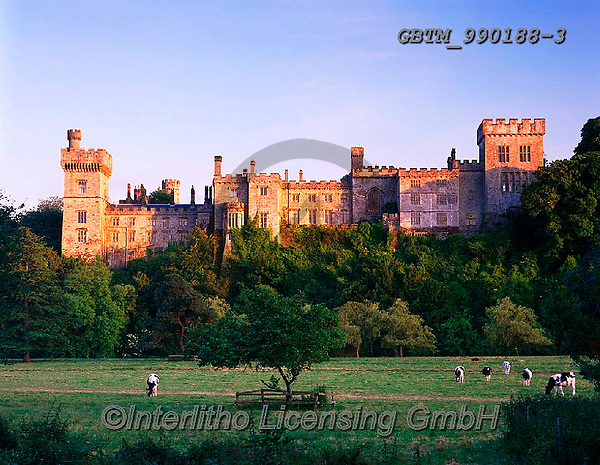 Tom Mackie, LANDSCAPES, LANDSCHAFTEN, PAISAJES, FOTO, photos,+6x7, castle, cattle, chateau, cow, cows, Eire, EU, Europa, Europe, European, farming, fortress, graze, grazing, heritage, his+toric, history, horizontal, horizontally, horizontals, Ireland, Irish, medium format, schloss,6x7, castle, cattle, chateau, c+ow, cows, Eire, EU, Europa, Europe, European, farming, fortress, graze, grazing, heritage, historic, history, horizontal, hor+izontally, horizontals, Ireland, Irish, medium format, schloss+,GBTM990188-3,#L#, EVERYDAY ,Ireland