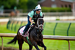 April 28, 2021: Will's Secret gallops in preparation for the Kentucky Oaks at Churchill Downs in Louisville, Kentucky on April 28, 2021. EversEclipse Sportswire/CSM