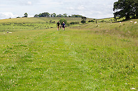 Cumbria, England, UK.  Hadrian's Wall Hikers Approaching.  Footpath goes over left side of hill in distance.